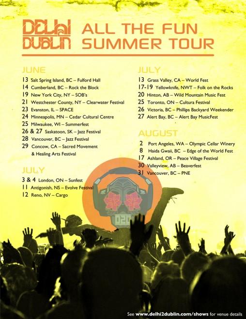 Delhi 2 Dublin - online tour poster (2014)